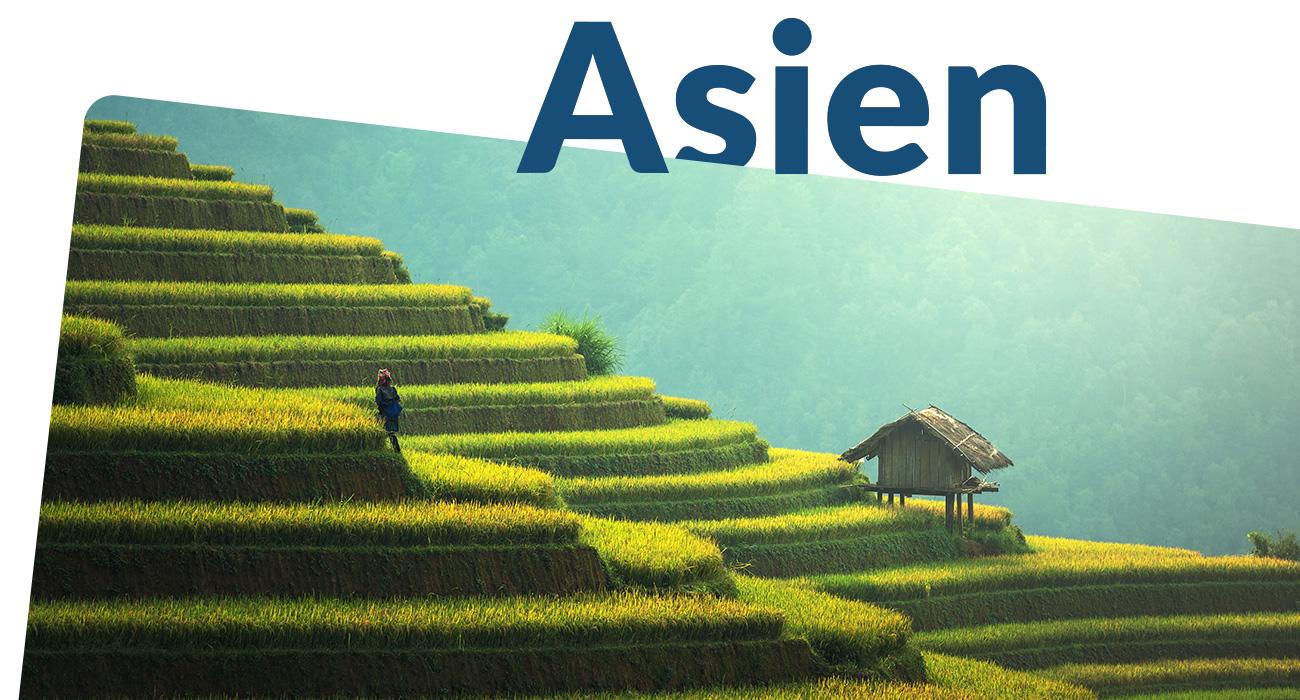 Asien Sektion